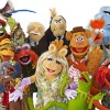'The Muppets' Are Coming Back, Show to Be Penned by 'Big Bang Theory' Co-Creator